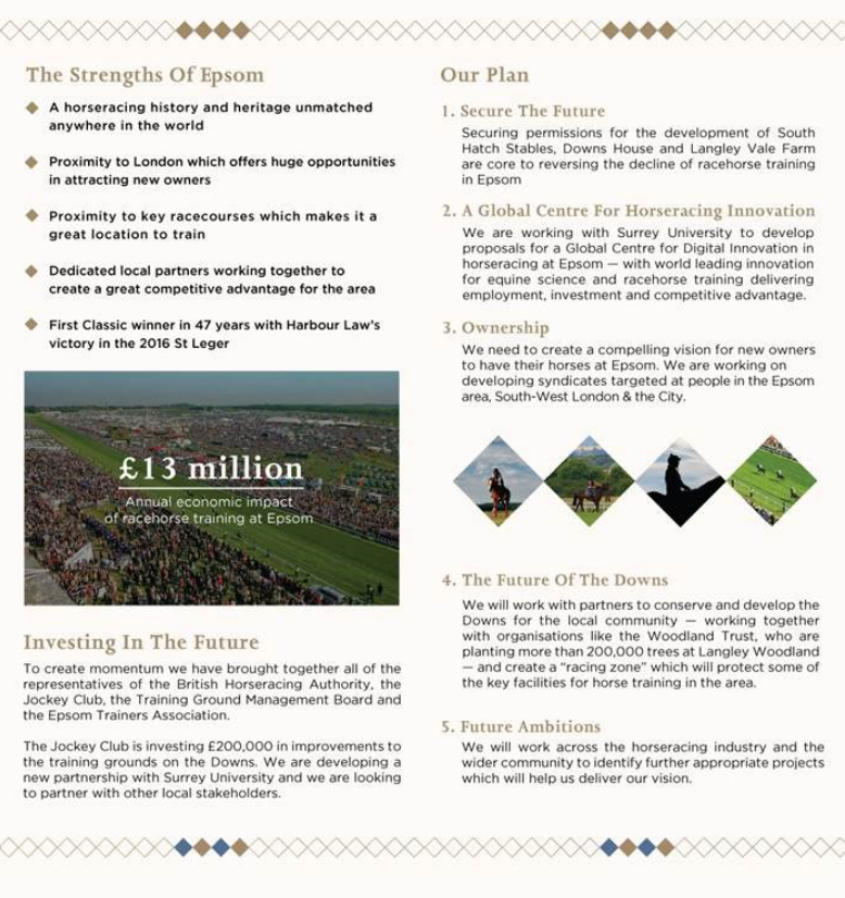 Epsom Vision for racing on Epsom Downs, page 2
