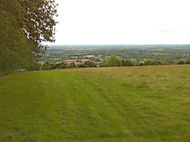 Lady Hill, looking south from adjacent to Round Wood